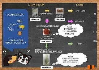 E38395E382A3E383A9E383AAE382A2-feb0f-thumbnail2[1].jpg