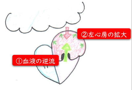 心臓3.png