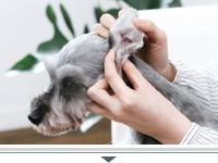犬 耳 2.jpg