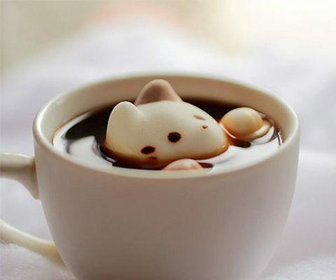 猫コーヒー.jpg
